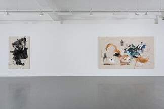 Vulture and Chicks, installation view