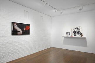 On View: Josephine Meckseper, installation view