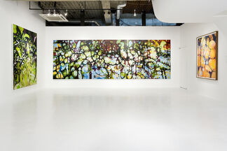 Janaina Tschäpe : Moon Blossom, installation view