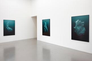 Hrafnkell Sigurdsson, installation view