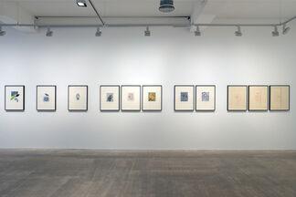 William Tillyer: À Rebours, installation view