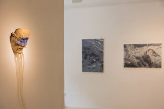 Waves and Emotions, installation view