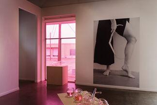 Liss Lafleur - Tutti Frutti, installation view