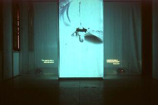FILI ECLESIASE - Maria Jose Donoso, installation view