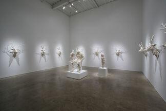 "Ken + Julia YONETANI ""Dysbiotica: The Age of Imbalance"", installation view"