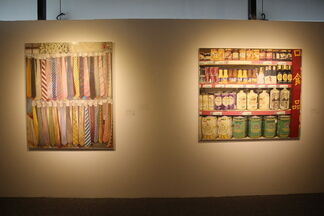 Beautiful Life in Reality, installation view