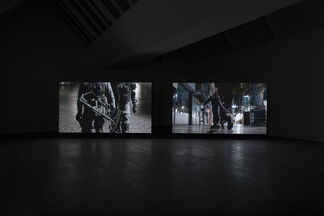 Aernout Mik - A swarm of two, installation view