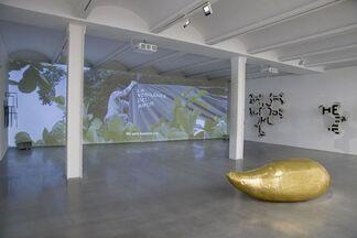 """IVAN ARGOTE """"LA VENGENZA DEL AMOR"""", installation view"""