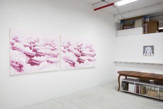 ANDRE VON MORISSE, PINK FREUD & THE PLEASANT HORIZON, installation view