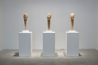 Haroshi: Still Pushing Despite the Odds, installation view