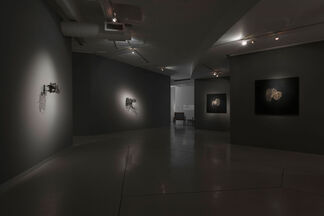 Gerhard Marx: Lessons in Looking Down, installation view