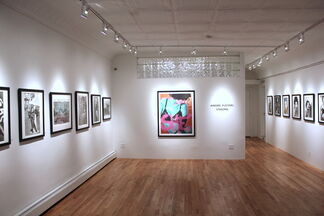 ANDRE PLESSEL: VISIONS, installation view