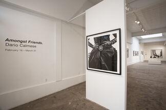Amongst Friends., installation view