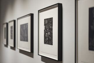 The Ancient Oceans, installation view
