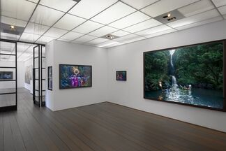 David LaChapelle: Act of Nature, installation view