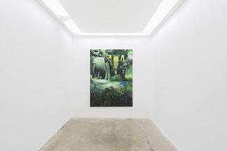Tilo BAUMGÄRTEL - Terra, installation view