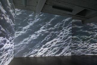 Swarm, installation view
