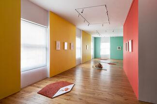 Mariana Castillo Deball - Point, installation view