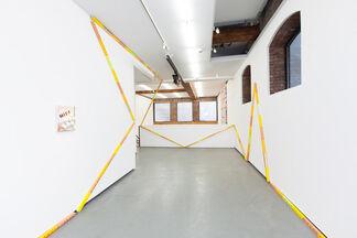 Adaptive Radiation: Cordy Ryman, installation view
