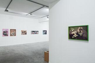 New Family / Nir Harel, installation view