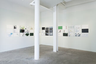 Paula Hayes, Lucid Green, installation view