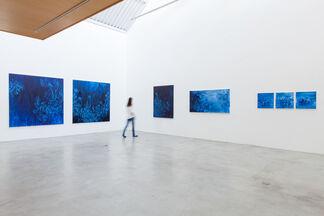Pedro Varela, installation view