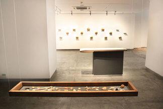 Cerebration, installation view
