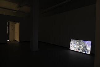 DONNA CONLON & JONATHAN HARKER - Bajo la Alfombra, installation view