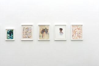 """Maurizio Donzelli """"Diramante"""" a cura di Bartholomew F. Bland, installation view"""
