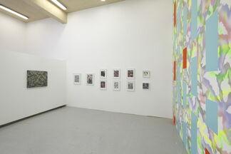 Hisham Akira Bharoocha: CONTROL, installation view