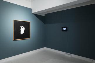 Fascination, installation view