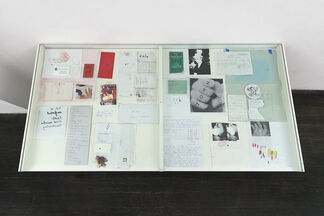 Thomas Lowe - They think it's all over, installation view
