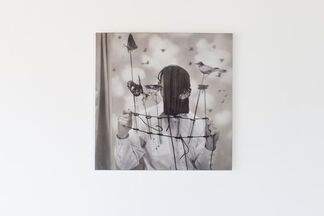 Gautier's Dream, installation view