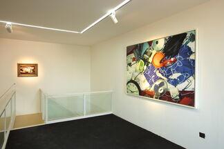 Lin Zhipeng - No. 223, installation view