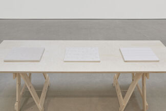 Anna-Bella Papp: Plans for an unused land, installation view