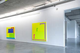 Peter Halley, installation view