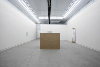 First The Pleasure Then The Thesis, installation view