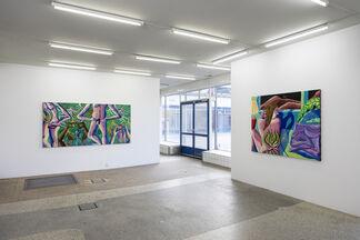 No Filter Eden - Ryan Schneider, installation view