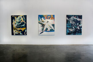 The Silent World, installation view