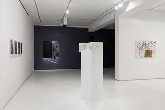Multiplicity, installation view