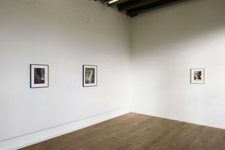 Jan De Maesschalck - Domesticated, installation view