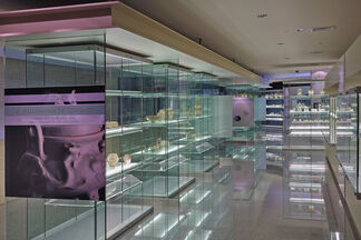 A Millennium of Contact: Chinese and Southeast Asian Trade Ceramics in the Philippines, installation view