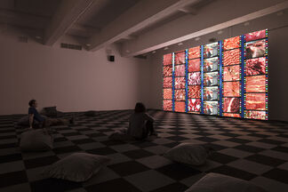 Liu Shiyuan: Isolated Above, Connected Down, installation view