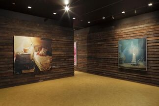 These Days, installation view