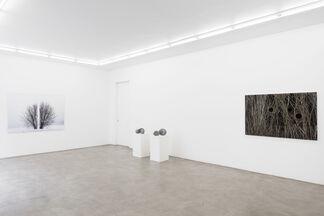 Antti Laitinen: Broken Landscape, installation view