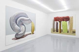 MICHEL PÉREZ POLLO - New Work, installation view