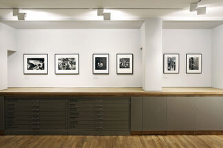 We Could be Heroes, installation view