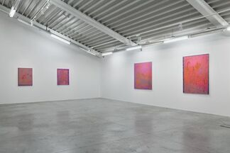 John McAllister 'Riot Rose Summery', installation view