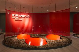 José Sancho: Erotic Nature, installation view