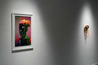 Twilight of the Idols, installation view